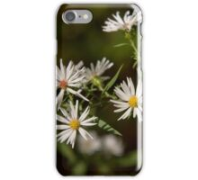 Song of Fall iPhone Case/Skin