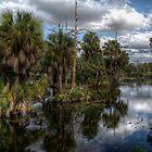 Lagoon by Mari  Wirta