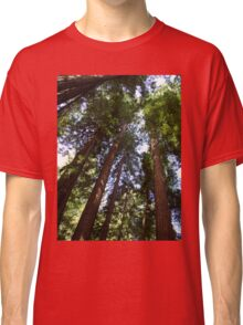Up the Redwoods Classic T-Shirt