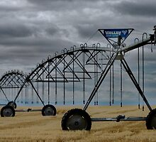 Pivot facing west in Southern Alberta by ntsotame
