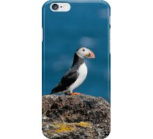 Top of the World 2 iPhone Case/Skin