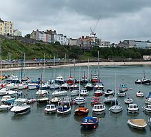 Tenby Harbour Pembrokeshire Panorama by Steve Purnell