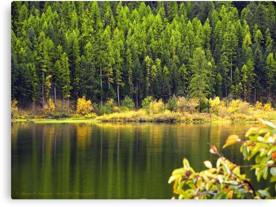 Salmon Lake Reflections by rocamiadesign
