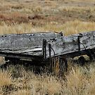 Old wagon left in field near Vulcan AB by ntsotame