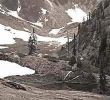 trail in heather meadows, wa, usa (sepia) by dedmanshootn
