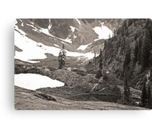 trail in heather meadows, wa, usa (sepia) Canvas Print