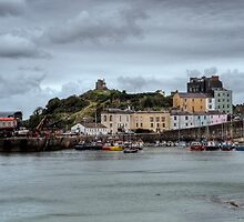 Tenby Harbour Pembrokeshire 8 by Steve Purnell
