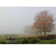 'Overnight Fog' Photographic Print