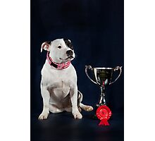 Molly - my Girl Photographic Print