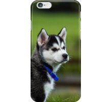 Watchdog iPhone Case/Skin