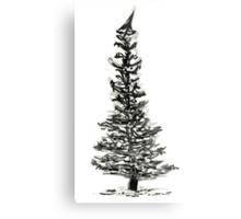 evergreen (haiga X) Metal Print