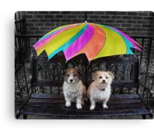 RAIN LOVERS... Canvas Print