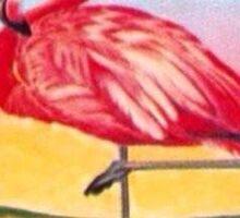 Flamingo Sticker