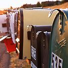 Mailboxes by Kay Kempton Raade