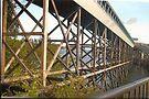 Bridge Near Bainbridge(Seattle,WA) by RobynLee