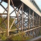 Bridge Near Bainbridge(Seattle,WA) by RobynLee