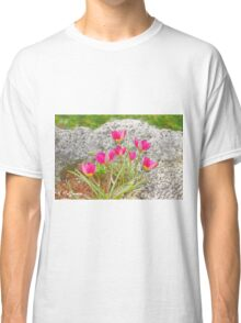 Pink Specie Tulips Classic T-Shirt