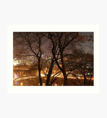 Vilnius at night Art Print