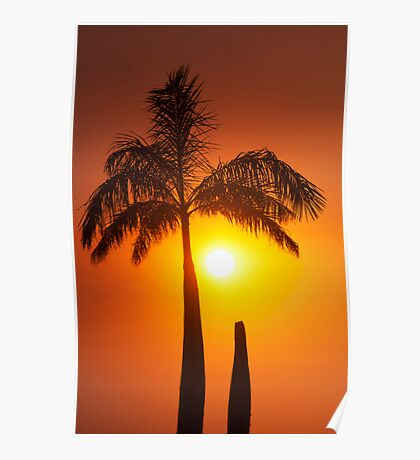 Golden glow - sunset in the tropics. Poster