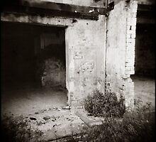 { creepy corner } by Lucia Fischer