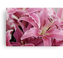 Bunch of Lillies Canvas Print