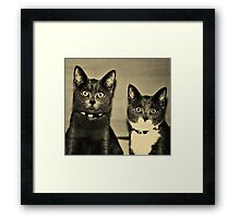 They were asked about their whereabouts during the recent riots involving kitchen paper rolls ... Framed Print