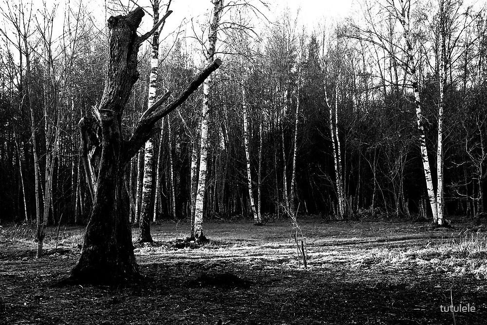 Empty Space by tutulele