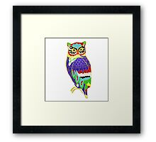 The Colourful Owl of Madness Framed Print