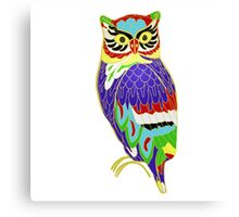 The Colourful Owl of Madness Canvas Print