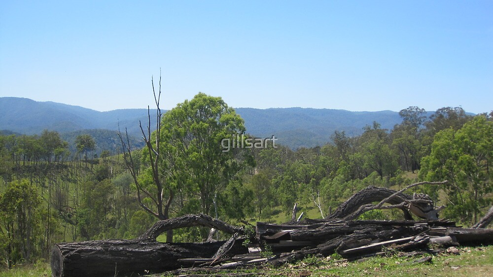 Northern New South Wales ....Hinterland views by gillsart