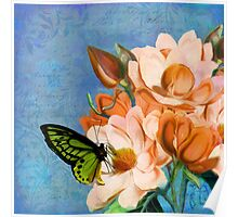 Periwinkle, peach magnolias, green butterfly vintage elements Poster