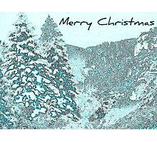 Christmas Teal Photographic Print