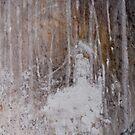 Seeking the Birch Wilderness by nadinecreates
