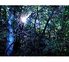 Iowa Greenbelt Blue Photographic Print