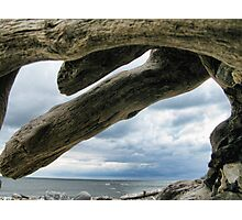 Giant Fingers Photographic Print