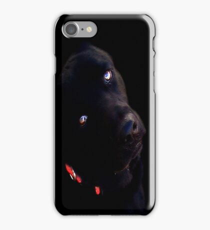 Black Lab  iPhone Case/Skin