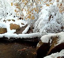 Snow White by Clarice Lakota