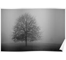 Hampton Common in Fog Poster