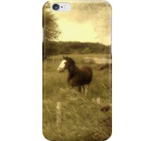 Free ~ iPhone Case iPhone Case/Skin