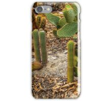 The cactus garden iPhone Case/Skin