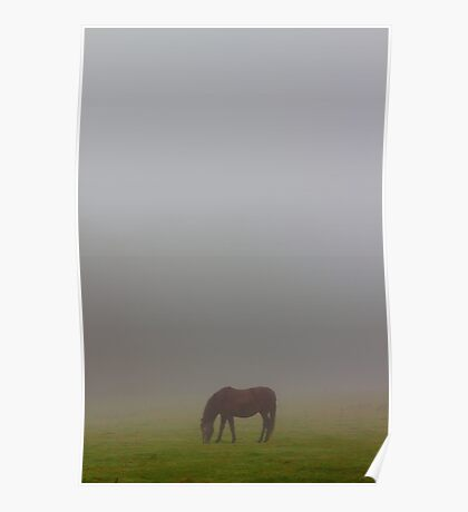 Lost in the morning fog Poster