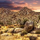 Scenic view at Joshua Tree National Park by Gerard Rotse