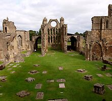 Elgin Cathedral (1) by kalaryder