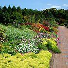 Lewis Ginter Botanical Garden ~ Richmond,VA - 3  ^ by ctheworld