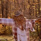 SCARECROW  ^ by ctheworld