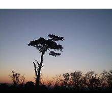 English landscape skyline  Photographic Print