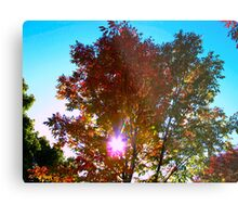 Autumn levity Metal Print