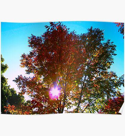 Autumn levity Poster