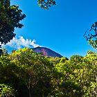 Pacaya Volcano, by bulljup