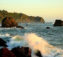 The California Coast by Erica & Mike Herman